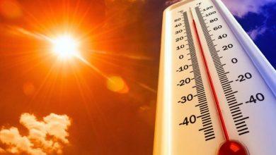 Photo of Sıcak Havalar Hasta Yapıyor